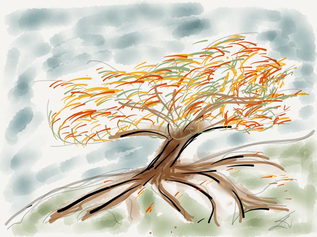 Laura's Tree - Paper & Pencil 53