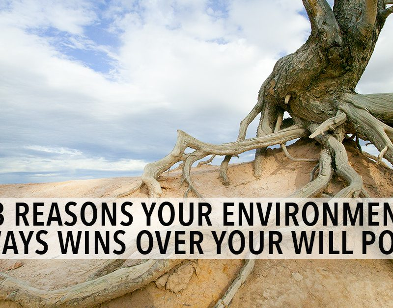 3 Reasons Your Environment Always Wins Over Your Willpower