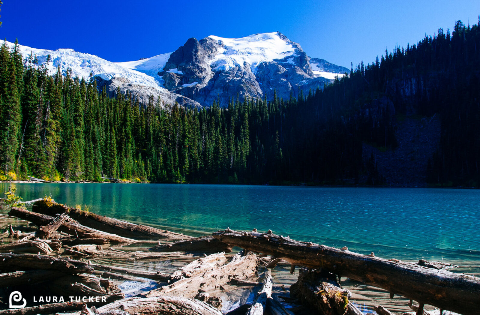 Surmountable Laura Tucker Daily Letter Joffre Lakes