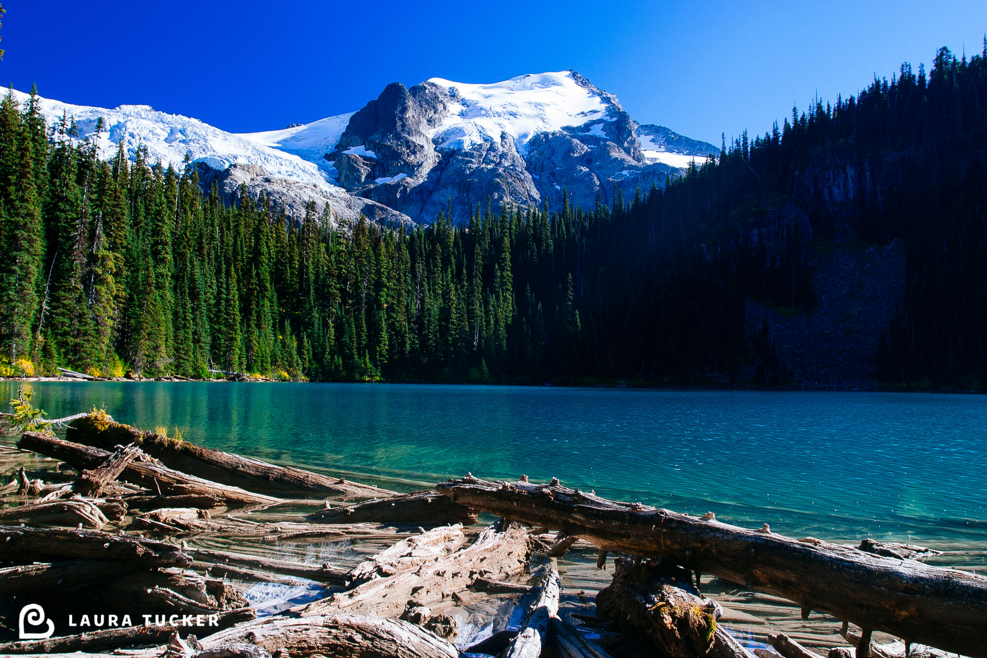 Surmountable Laura Tucker Daily Letter Joffre Lakes