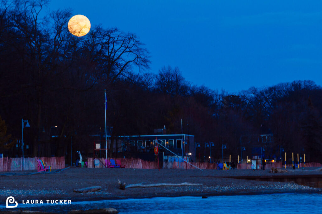 Moonrise Over Balmy Beach Club Toronto